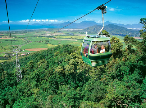 Palm Cove Cairns Tours & Activities